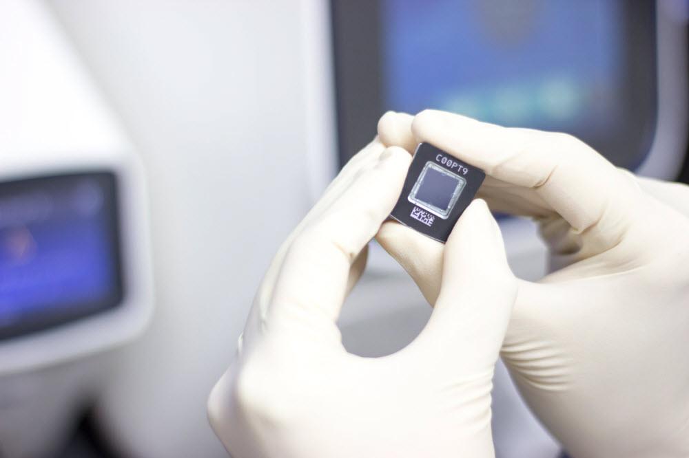 Gloved hand holding lab chip